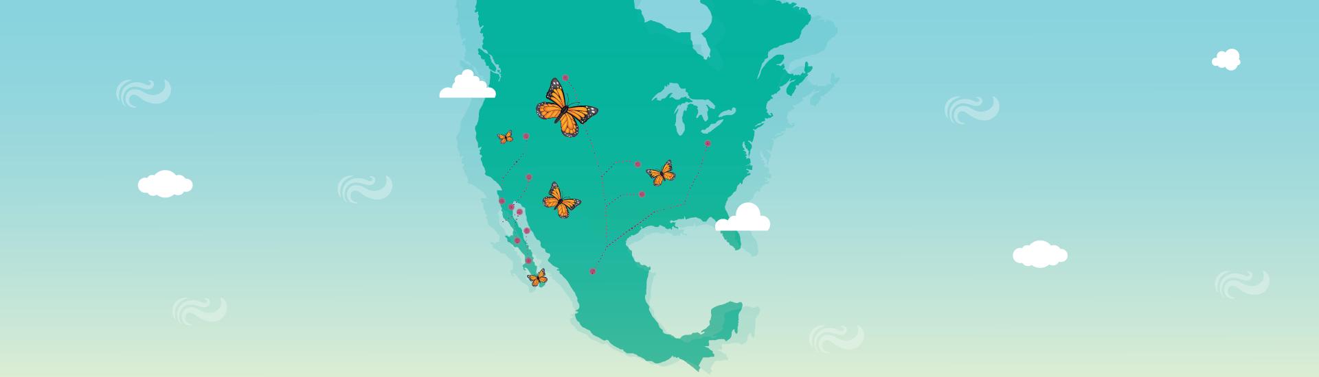 La Ruta Migratoria de la Mariposa Monarca